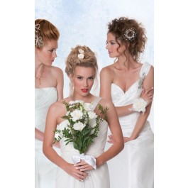 Worcester Brides #9 Hair Styles and Up Do's