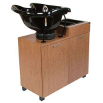 Collins 944-32 AMATI Backwash Shampoo Unit